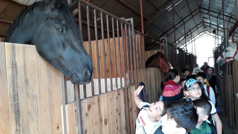 Özel Muradiye Aksoy Okulları'ndan Ziyaret